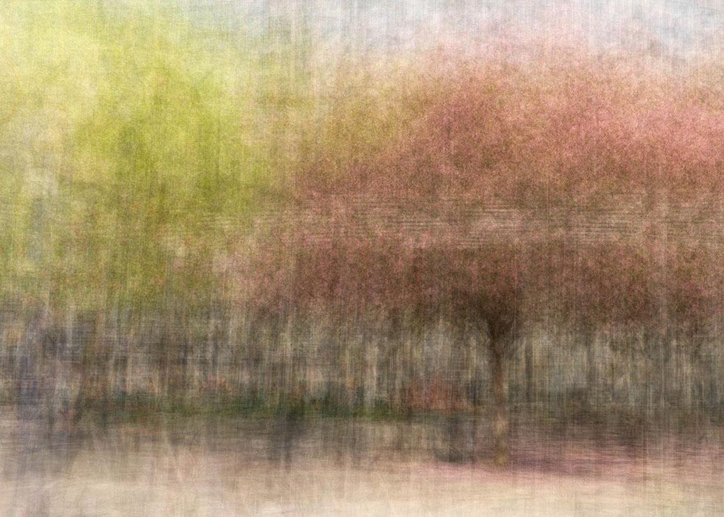 Photo Impressionism on the Web