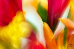 Flores Theatro